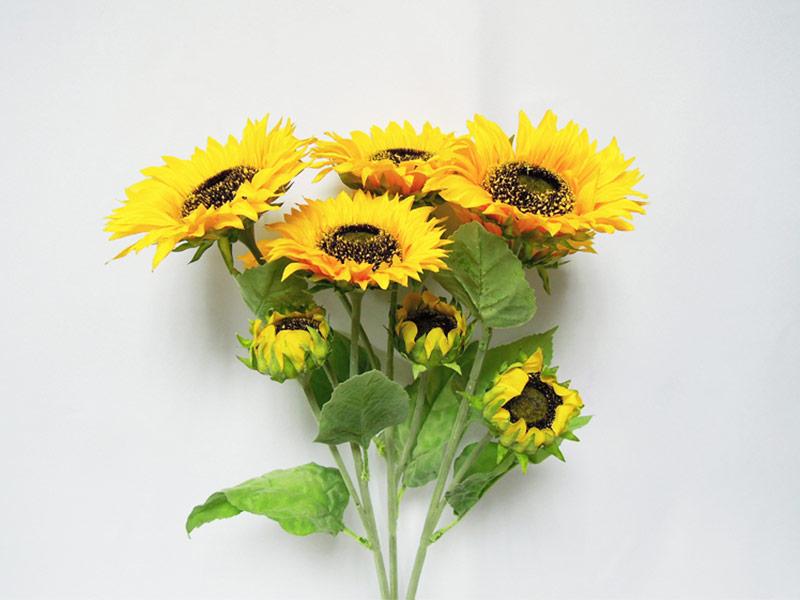 太陽花束X9