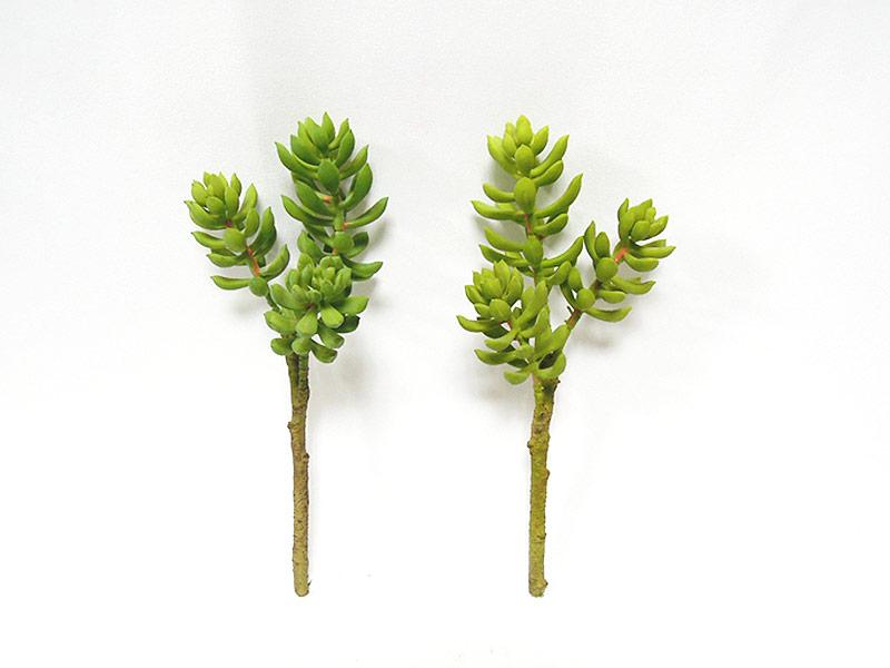 深綠/淺綠