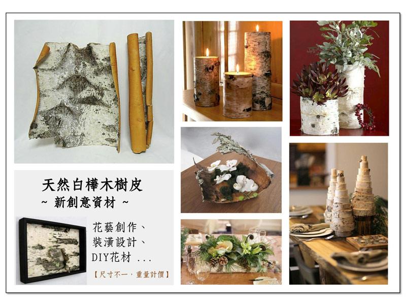 白樺木作品