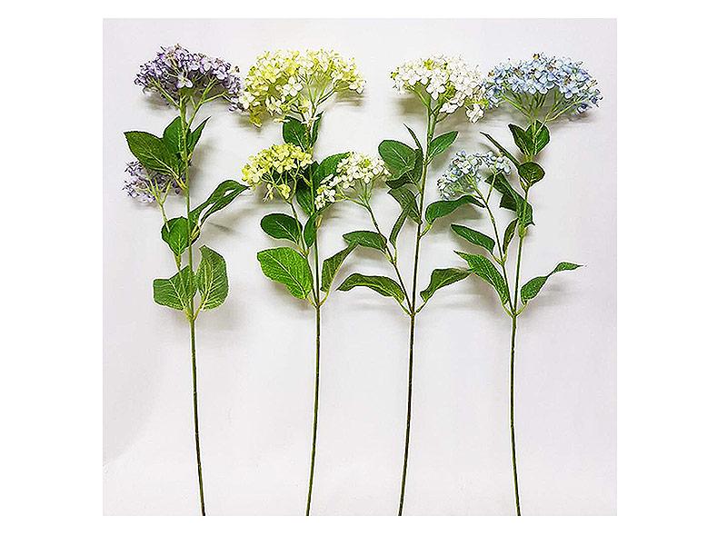紫/綠/白/藍